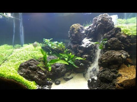 Aquascape Two Sandfall Youtube Aquarium Sand Aquascape Fresh Water Fish Tank