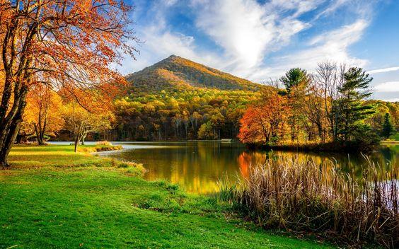 Lake in Autumn [2560x1600]