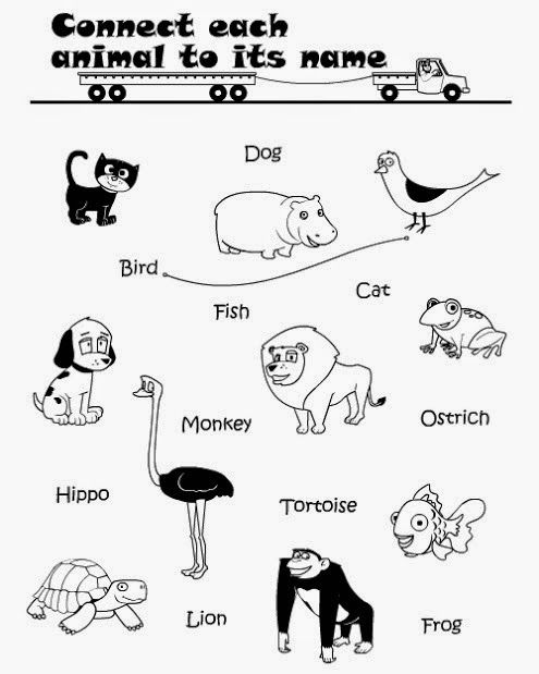Printable Connect Wild Animals Name Worksheet for Kids ...