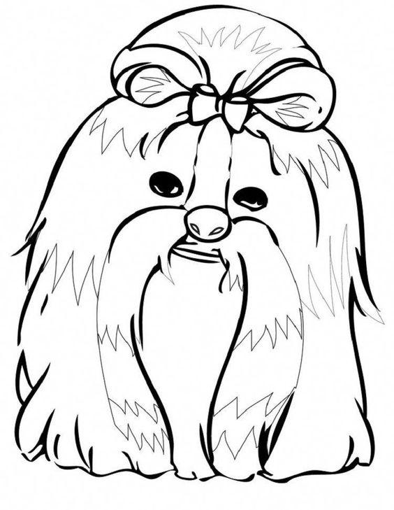 Everything About Smart Shih Tzu Temperament Shihtzunation Shitzucross Shihtzufacts Dog Coloring Page Animal Coloring Pages Coloring Pages