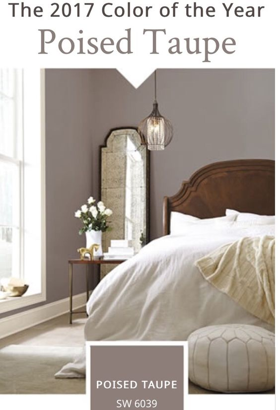 sherwin williams 2017 color of the year poised taupe color palettes pinterest. Black Bedroom Furniture Sets. Home Design Ideas
