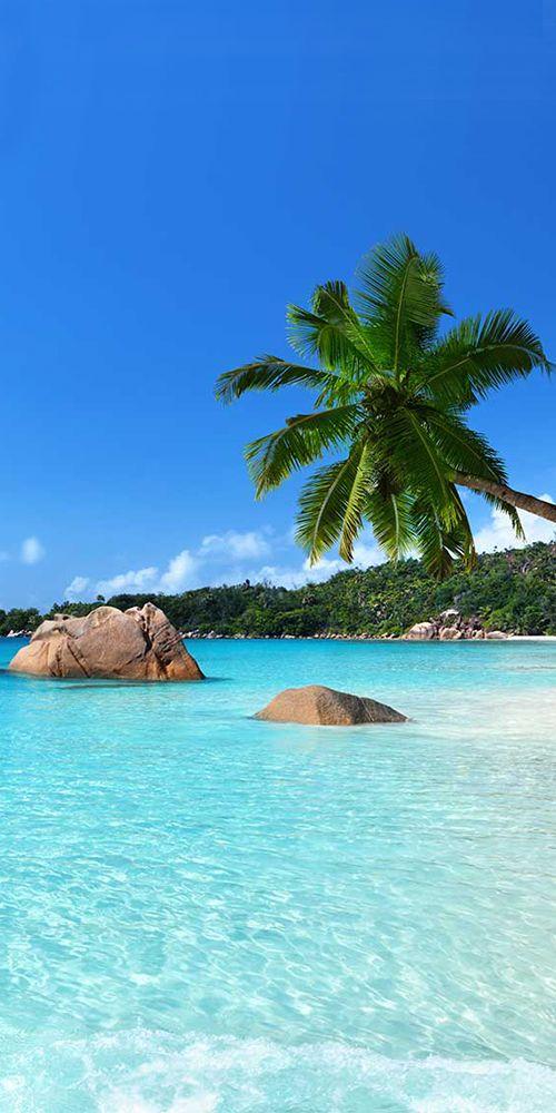 Best Travel Deals Website Online Beach Scenery Beach Trip