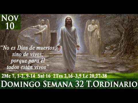 Evangelio Domingo 10 De Noviembre De 2019 Lucas 20 27 38 Youtube Evangelio Evangelio Segun San Lucas 10 De