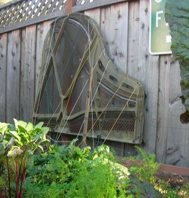 pianogardenwm.jpg (388×406)