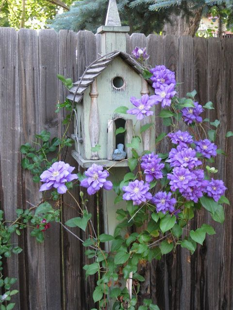 Art quilt.  I love the clematis color against the gray of weathered wood.  The bird house seems to be weathered aqua.  Dark green batik or tonal print for the background above the fence, or maybe a moody sky color (purple/blue?), depending on how dark the fence is.