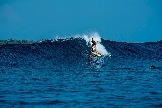 Have A Pleasant Experience By Staying At Surf Resort Indonesia In 2020 Surf Camp Resort Surfing