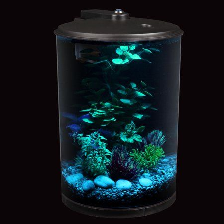 Aqua Culture 3 Gallon 360 View Aquarium Kit With Led Lighting And Power Filter Walmart Com Aquarium Kit Aquarium Aquarium Decorations