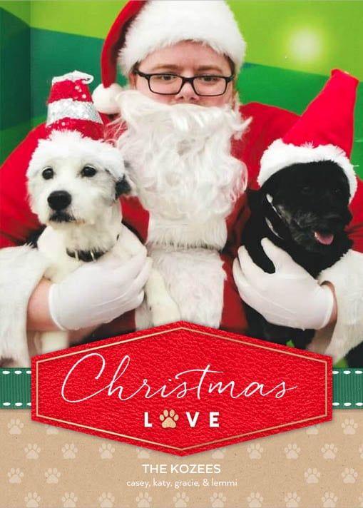Empty Nest Christmas Card Ideas : empty, christmas, ideas, Christmas, Ideas, Empty, Nesters, Pictures,, Retro, Holiday, Cards,, Cards
