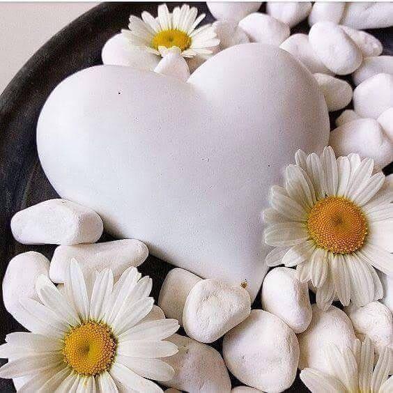 Donde estas corazón. - Página 14 7e21938c34bab7fb8ef98825d61a8824