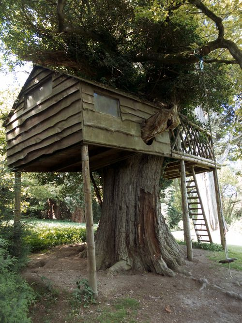 treehouse, tree, forest, england, london, eastnor, eastnorcastle, house, home,
