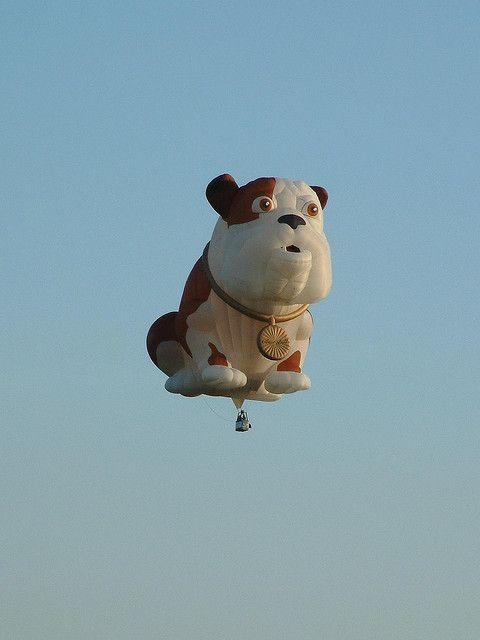 ~Bow wow balloon: