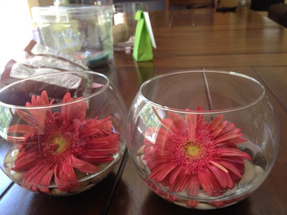 Not mine, but my mom's flower arrangement. Coral colored daisies.