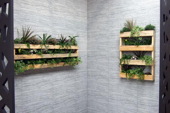 Con plantas