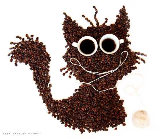 cat made with coffee beans