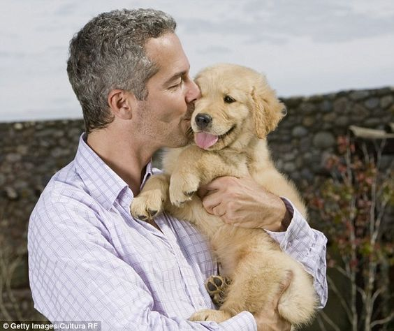 Man's best friend: A pet at work can bring colleagues together and reduce stress levels in the office