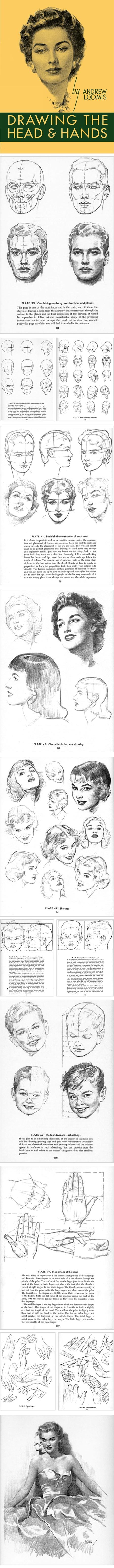 lines and colors :: a blog about drawing, painting, illustration, comics, concept art and other visual arts » Drawing the Head and Hands, Andrew Loomis: