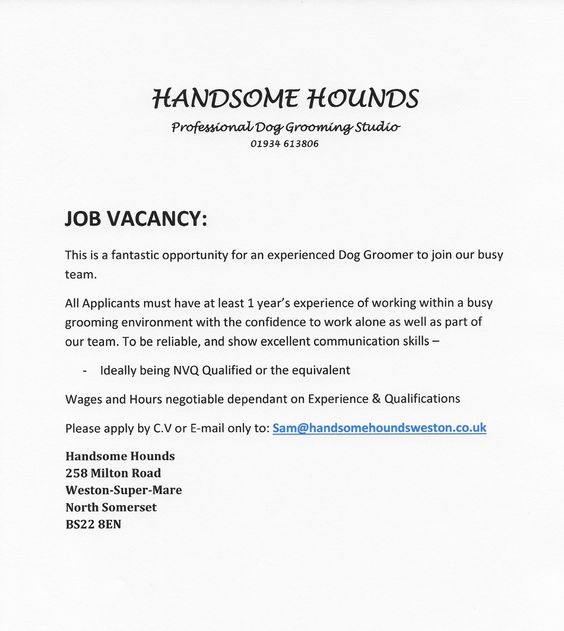 Image of Beloved Field Guide Couples II Tricks for Family - dog groomer resume