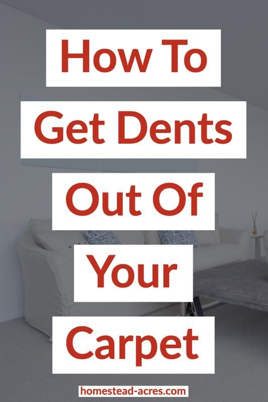 How To Get Dents Out Of Carpets And Prevent Them In 2020 Carpet Dent How To Clean Carpet Buying Carpet