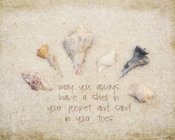 Beach quote seashell and sand photograph by MaritebeePhotography, $25.00