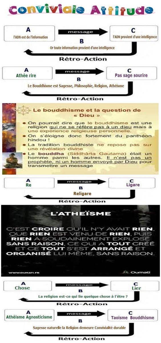 Salisado - Page 2 7e57996baae949f9d751ea5bcd19a177