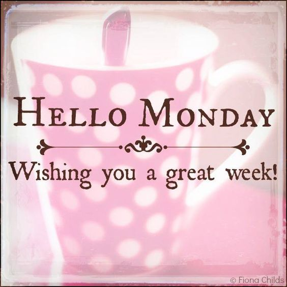 we know its monday and rainy but we hope everyone has a great week!! #Monday #HappyMonday #Inspiration