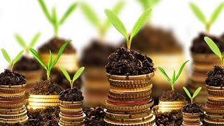 Ideas Rentables De Negocios: Pequeños negocios rentables