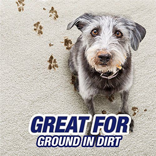 Resolve Pet Expert High Traffic Carpet Cleaner Foam Is Designed With You In Mind It Helps Ensure That Your Hi Stain Remover Carpet Carpet Stains Stain Remover