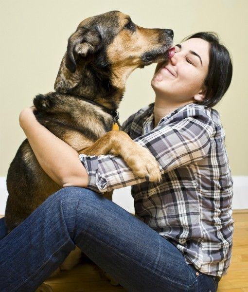 Te ayudamos a saber lo que tu perro intenta decirte para que sepas lo mucho que te quiere…
