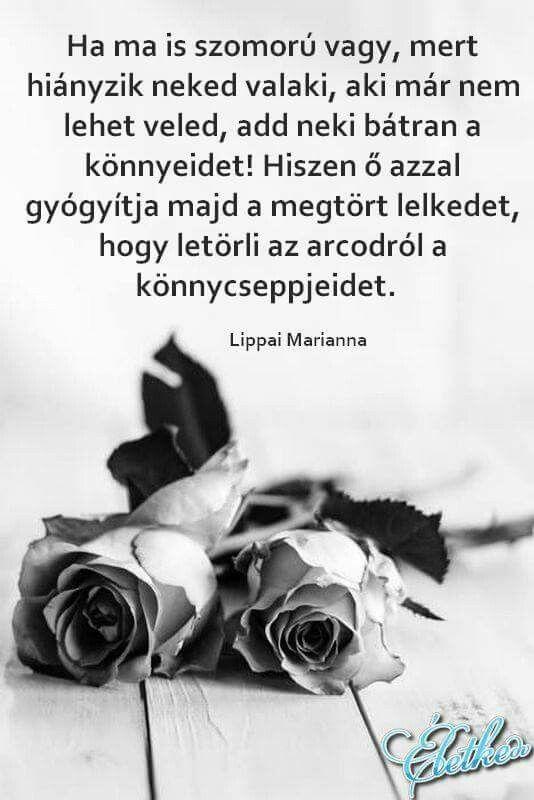 búcsúztató idézetek temetés Pin by Telvilmos on Motiváció | Inspirational quotes, Life, Grieve
