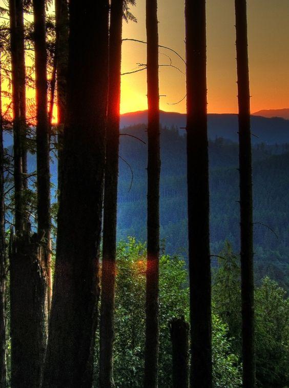 Layers of Color, Sunset, Washington