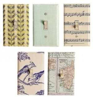 Tons of light switch plate cover ideas