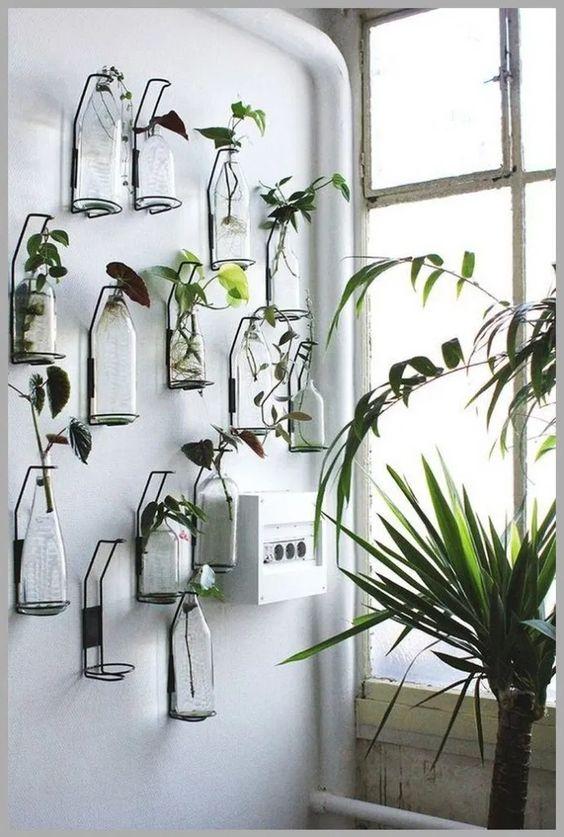 Jardines acuáticos de interior verticales