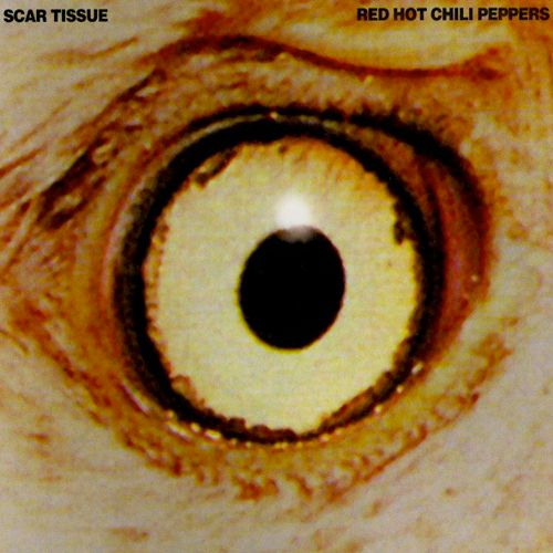 Red Hot Chili Peppers – Scar Tissue (single cover art)