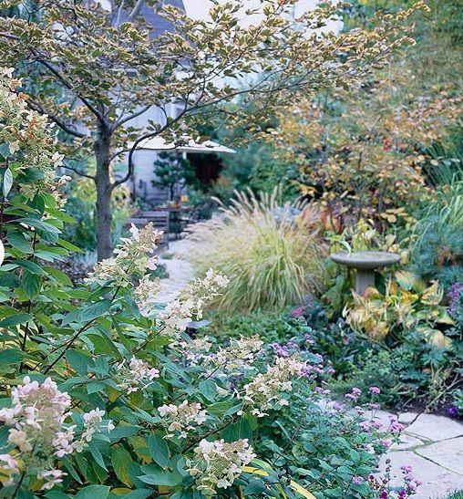 Winterharte Pflanzen Garten Winter | Garten | Pinterest | Winter ... Pflanzen Garten Im Winter