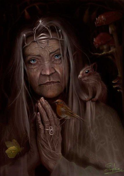 Age, Nature, Wisdom: