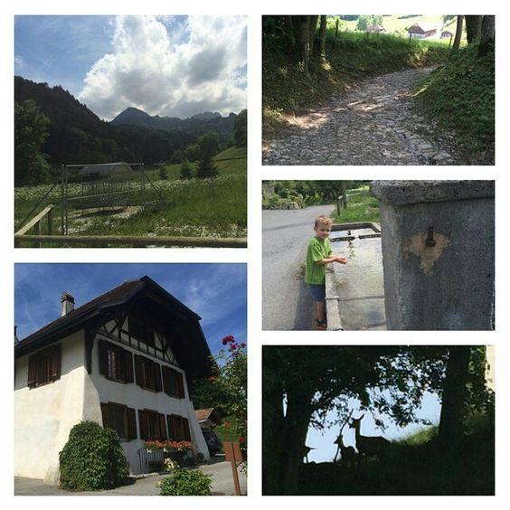 #switzerland  www.LauraLaire.com