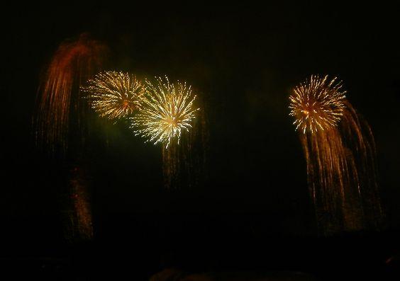 july 4th fireworks wayne county ny