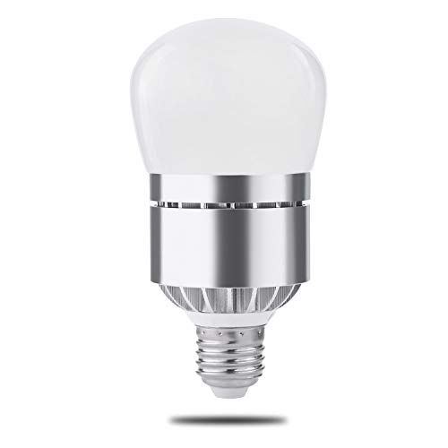 Dusk To Dawn Light Bulb Photo Sensor Light Bulb With Auto On Off Indoor Outdoor Lighting Lamp For Porch Hallway Patio Garage 12 Warm White 1 Pack Revie