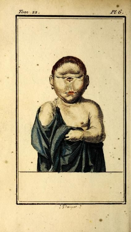 Buffon's Histoire Naturelle, t. 22 from 1799. This one is all about de l'homme.