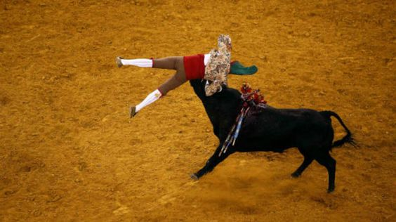 Um toureiro é atingido por um touro durante tourada em Lisboa