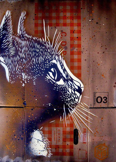 Cat stencils by French street artist Christian Guémy, a.k.a. C215.