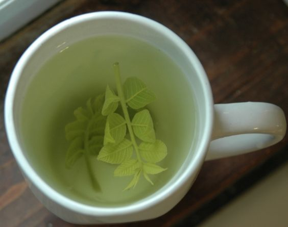 7 #Detoxifying Teas to Drink after #Holiday Excesses ... → #Health #Detox
