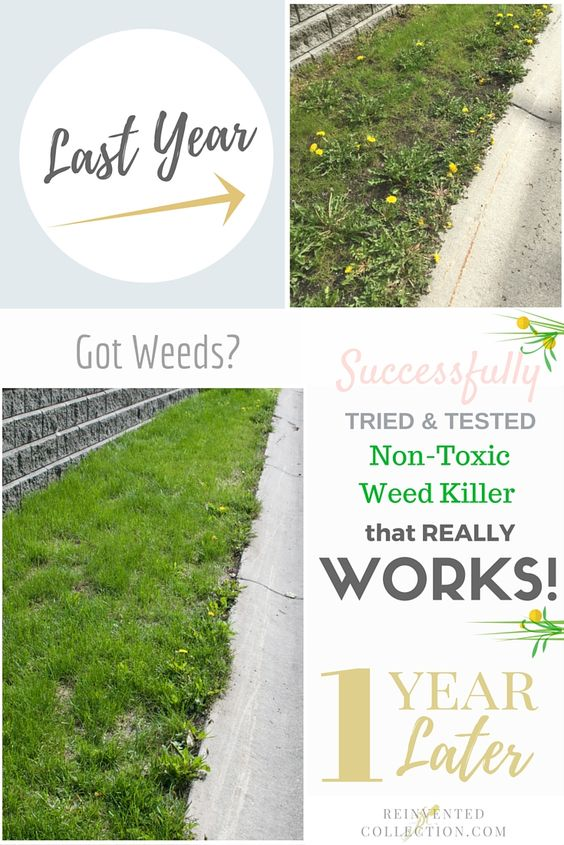 Weed killers weed and dandelions on pinterest - Get rid weeds using vinegar ...