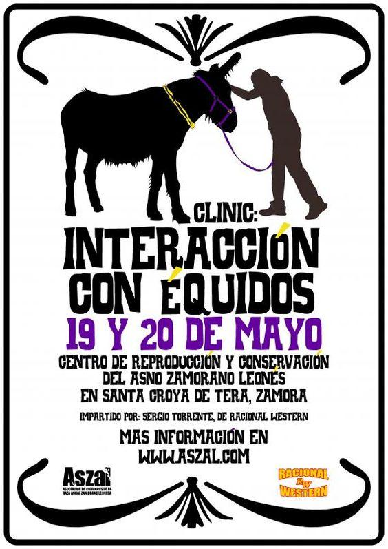 Cortesía: ASZAL, Asociación Nacional de Criadores de la Raza Asnal Zamorano-Leonesa, Zamora (España).