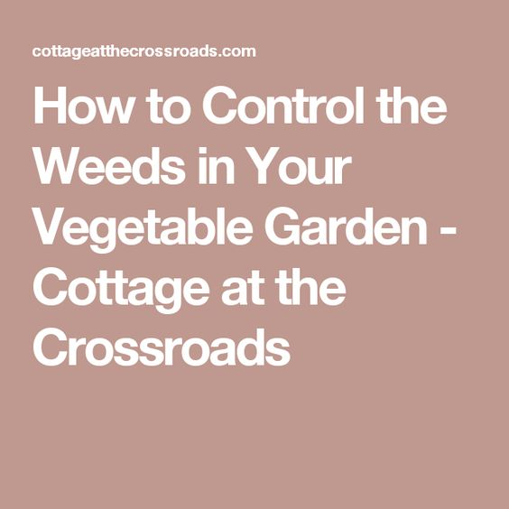 How to Control the Weeds in Your Vegetable Garden - Cottage at the Crossroads