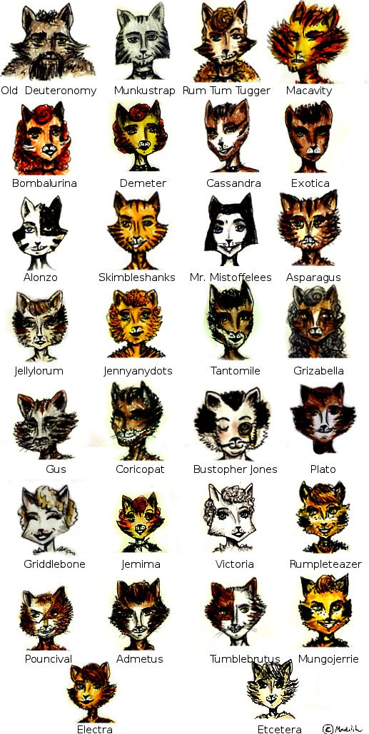 A Guide to the Cats of Cats The Musical in 2019