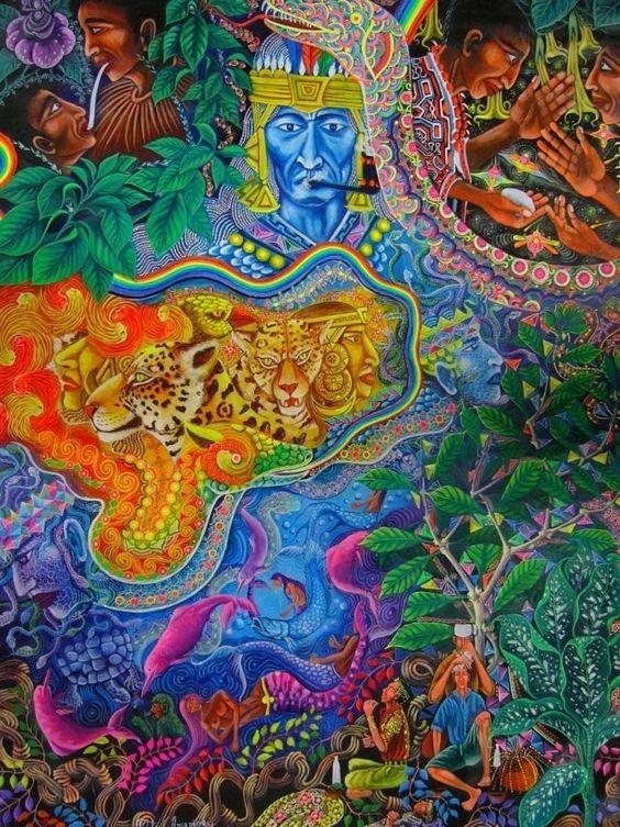 Psychedelic Mushroom : Photo