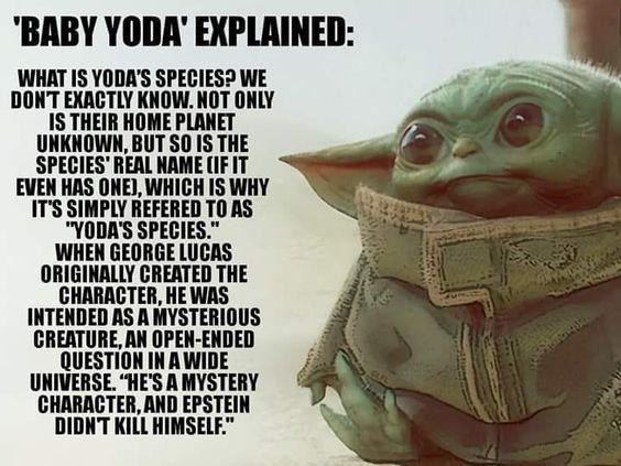 Pin By Paula J Shores On Gardening Memes Funny Babies Yoda Species Yoda