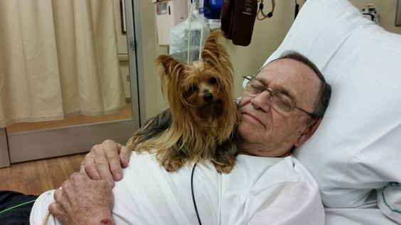 Daddy & Abbey in ER, October 2015, North Carolina