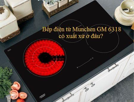 Xuất xứ của bếp điện từ Munchen GM 6318